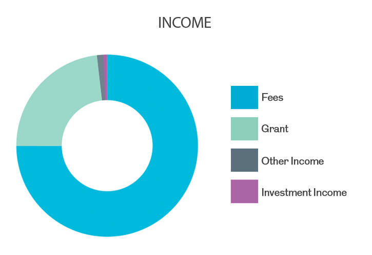 Income and Expenditure chart 15-16