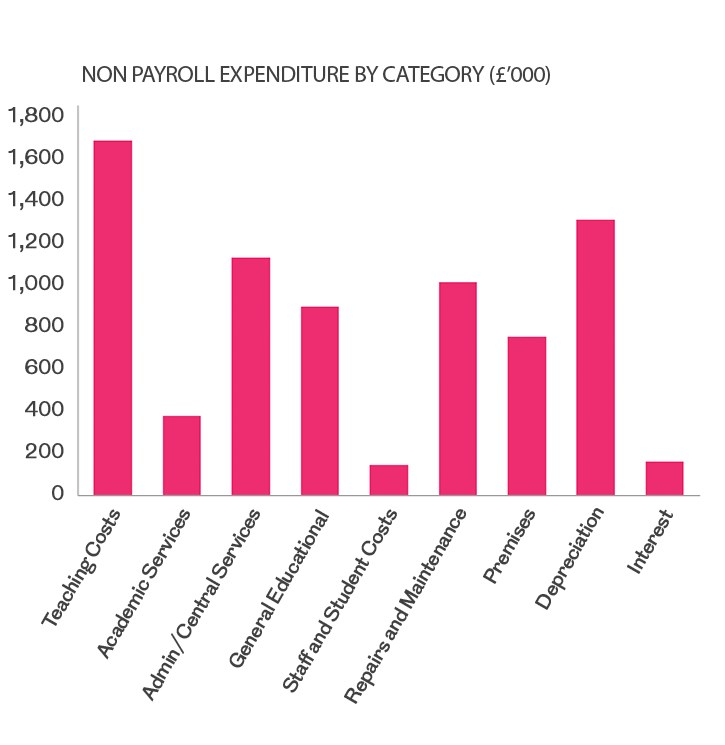 Non Payroll Expenditure chart